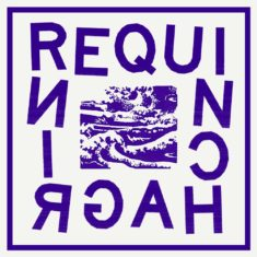 Requin Chagrin - Interview FAIR
