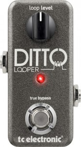 TC+DITTO+LOOPER-2