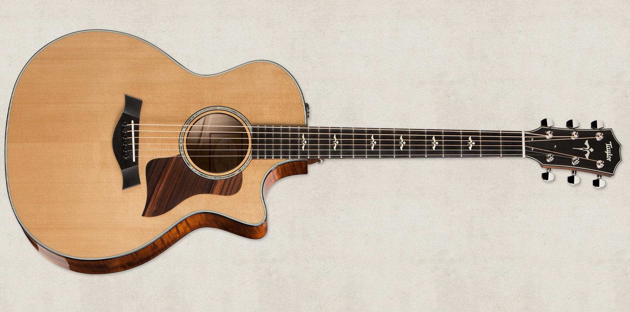 614ce-FE-brn-front-taylor-guitars-2015-full